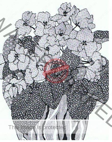 African Violets - Susanne Graham